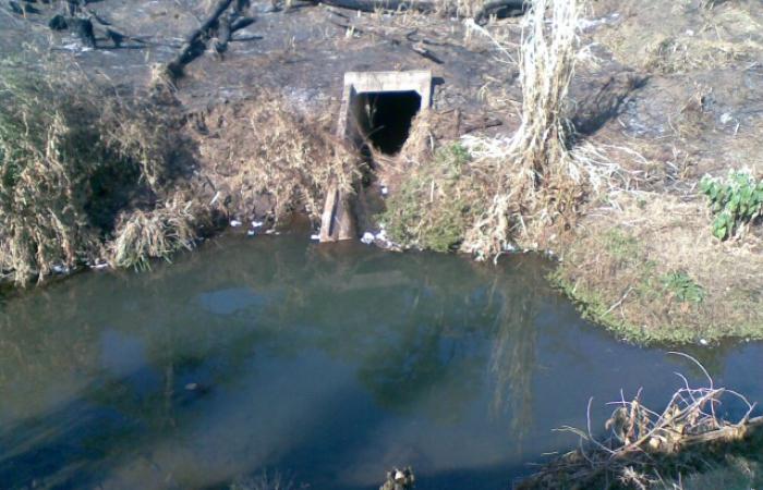 Dorpspruit River Walk